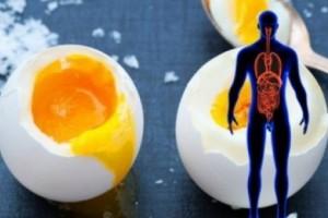 Να τι συμβαίνει στο Σώμα σας εάν τρώτε Αβγά κάθε Μέρα για ένα Μήνα!