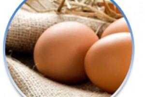 Αυγο...πληροφορίες